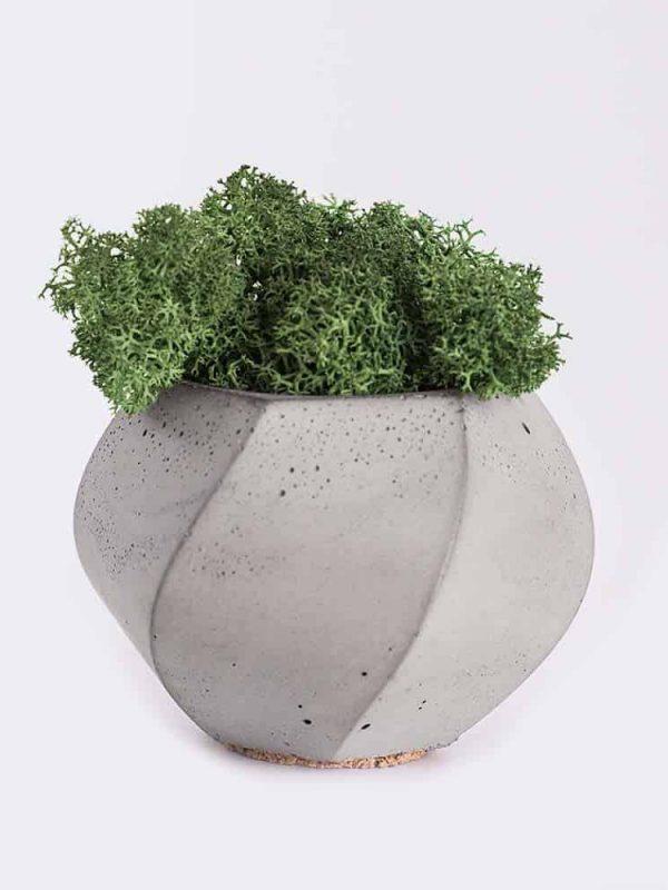 plant4-free-img